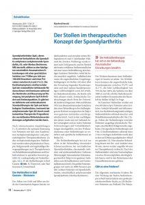 thumbnail of Der Stollen im therapeutischen Konzept der Spondylarthritis_Prof.DDr.Manfed_Herold_November_2014