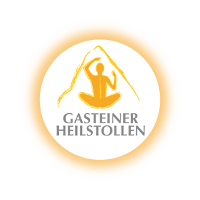 Heistollen Logo in transparenter Darstellung