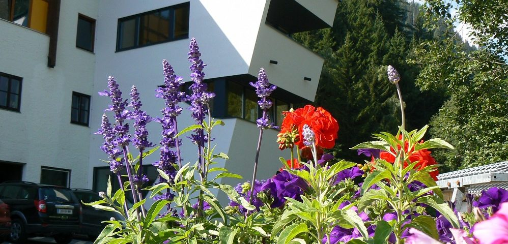 Heilstollen Gebäude in Gastein im Frühling mit Blumen